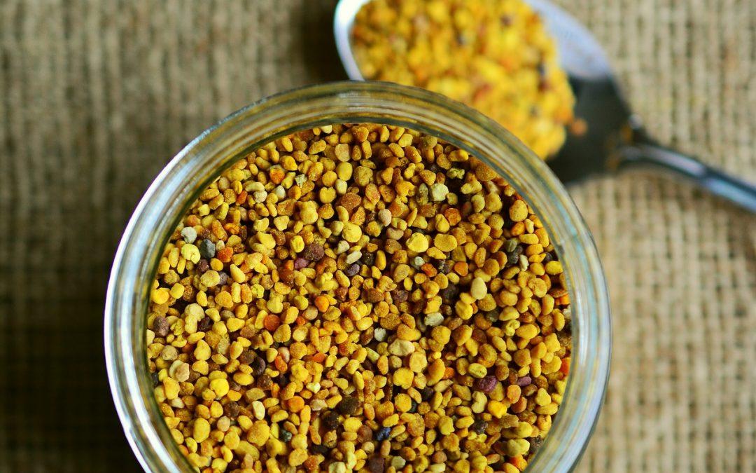 Pyłek pszczeli – skarbnica zdrowia